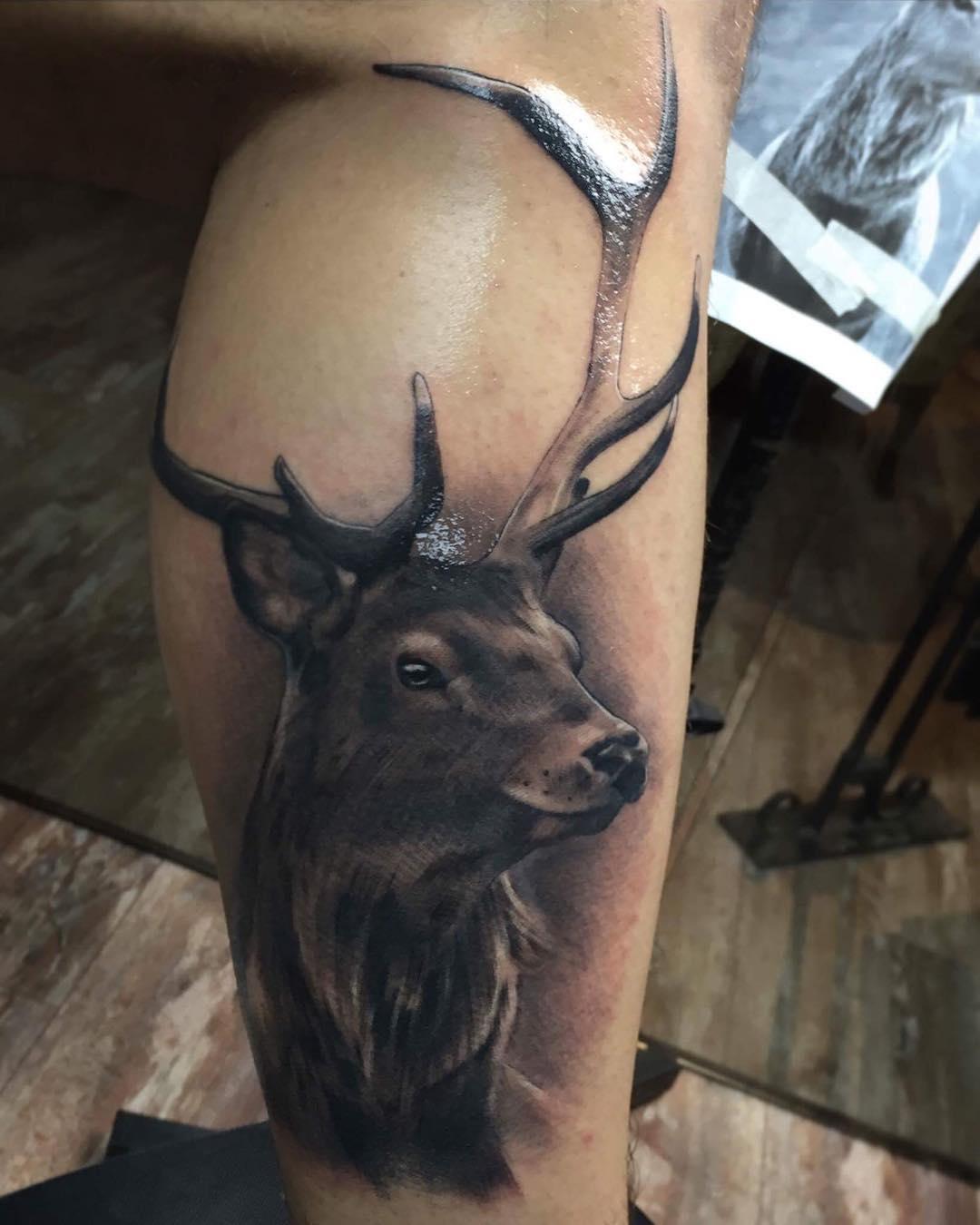 做基金经理助理的应先生小腿外侧麋鹿纹身图案图片